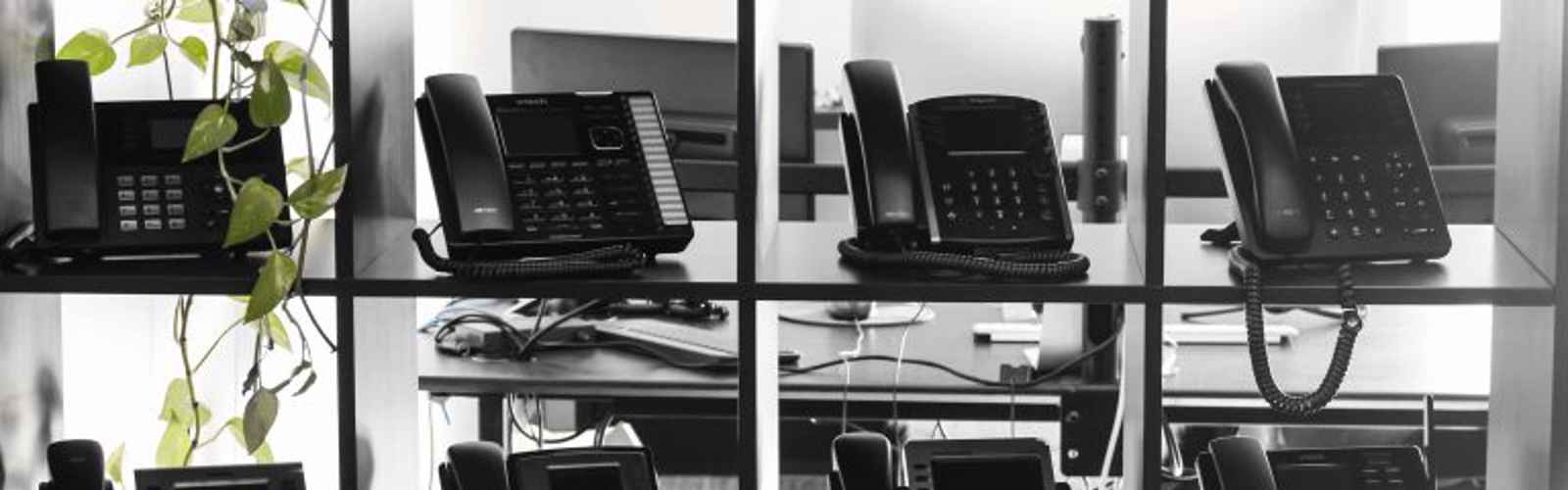 3 Small Business IP Phones Under $75